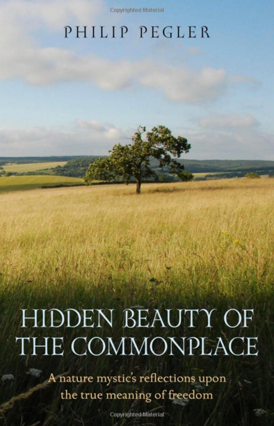 Hidden Beauty of the Commonplace  by Philip Pegler Book Cover Front